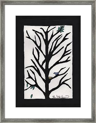 Bluebird In A Pear Tree Framed Print by Barbara St Jean