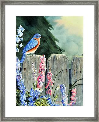 Bluebird Morning Framed Print