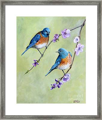 Bluebirds And Blossoms Framed Print