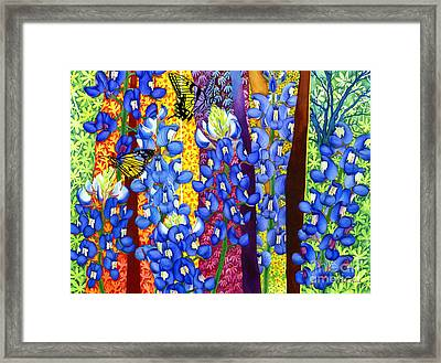 Bluebonnet Garden Framed Print by Hailey E Herrera