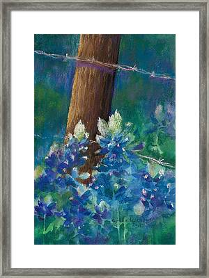 Bluebonnets At The Fencepost Framed Print by Cynthia Roudebush