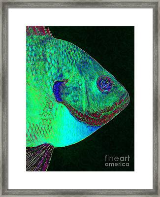 Bluegill Fish P128 Framed Print