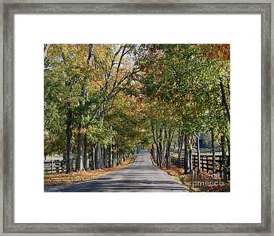 Bluegrass Fall Framed Print by Roger Potts