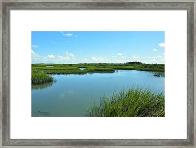 Bluegrass Framed Print