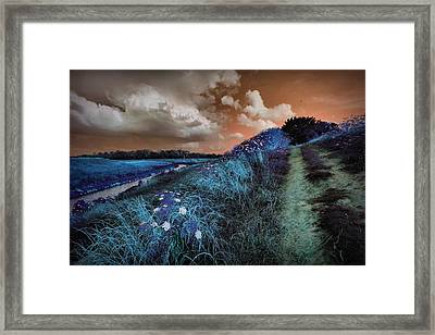Bluegrass Framed Print by Linda Unger