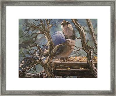 Framed Print featuring the painting Bluejay by Megan Walsh