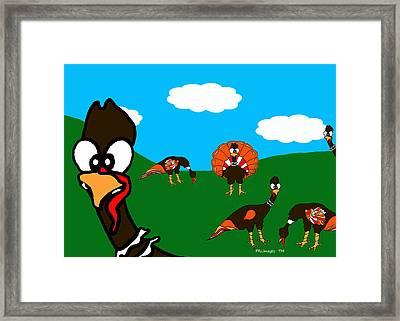 Blueskyfarm Turkeys Framed Print