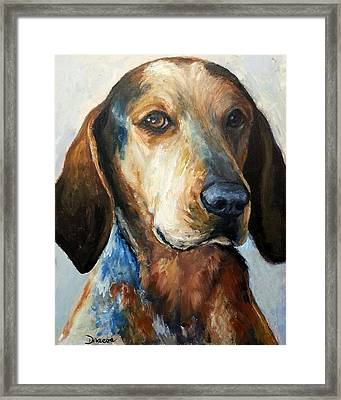 Bluetick Coonhound Framed Print by Dottie Dracos