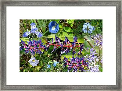 Bluetiful Framed Print