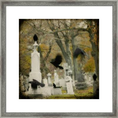 Blur Of Crows Framed Print by Gothicrow Images