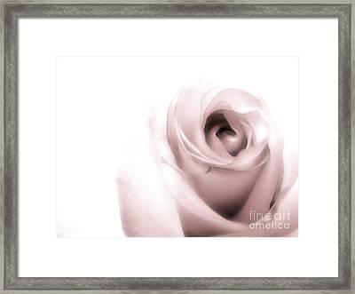 Blush Framed Print by Peggy Hughes