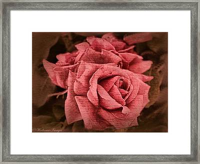 Blush Framed Print by Wallaroo Images