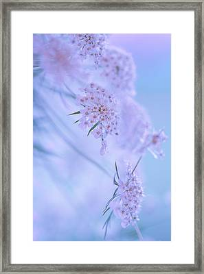 Blushing Bride Framed Print
