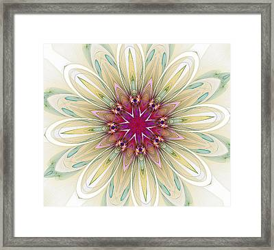 Blushing Colors Framed Print
