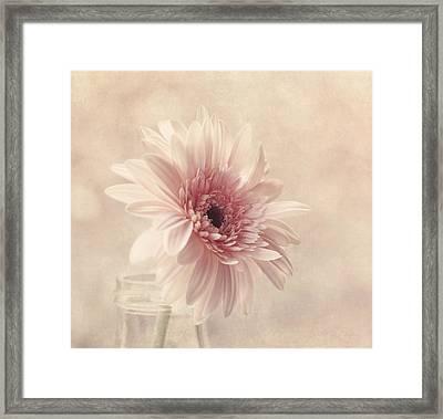 Blushing Framed Print by Kim Hojnacki