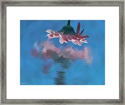 Blushing Pink Bloom Framed Print by Barbara St Jean
