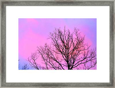 Framed Print featuring the photograph Blushing Sky by Candice Trimble