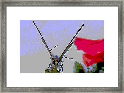 Blustery Day Framed Print by Rebecca Flaig