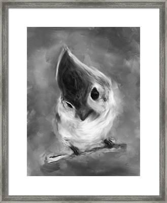 Bnw Bird Framed Print by Dhouib Skander