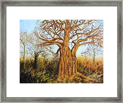 Baobab Tree Framed Print by Caroline Street