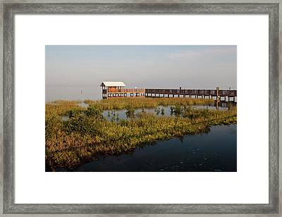 Boardwalk At South Padre Island Birding Framed Print by Larry Ditto