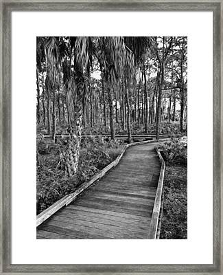 Boardwalk In Black And White 2 Framed Print