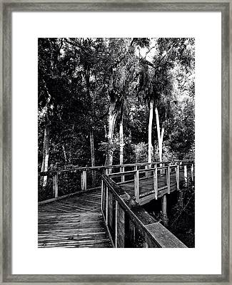 Boardwalk In Black And White Framed Print