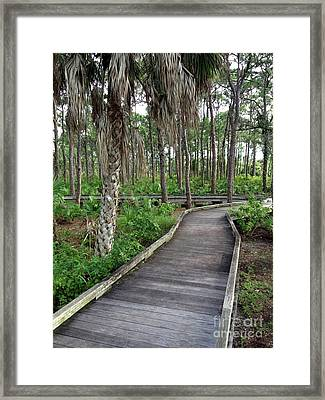 Boardwalk  Framed Print by K Simmons Luna
