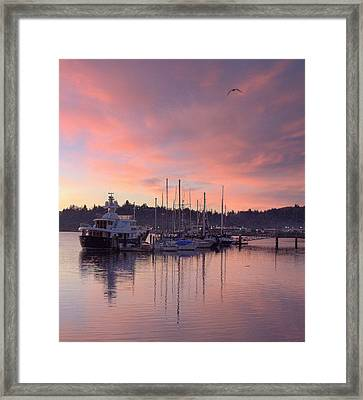 Boardwalk Sunrise Framed Print by Suzy Piatt