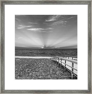 Boardwalk To The Sea Framed Print by Michelle Wiarda