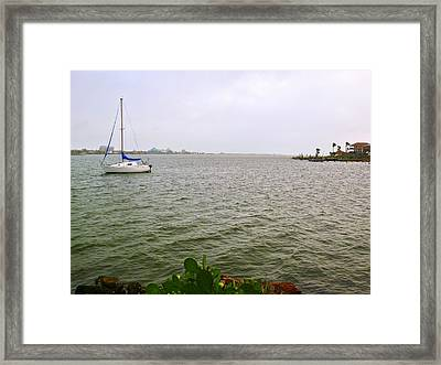 Boat And Catcus Framed Print