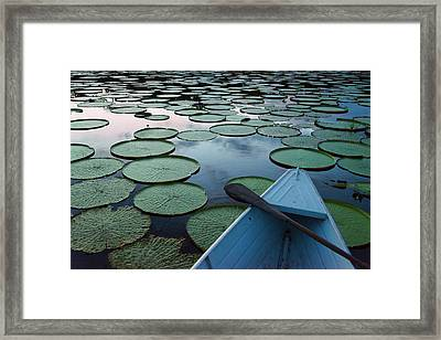 Boat On Rupununi River With Victoria Framed Print by Keren Su
