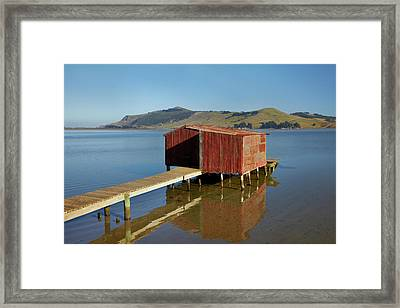 Boat Shed, Hoopers Inlet, Otago Framed Print by David Wall