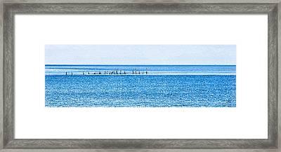 Boat Tie - Ups - High Key - Chesapeake Bay Framed Print by Paulette B Wright