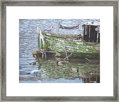 Boat Wreck With Sea Birds Framed Print by Martin Davey