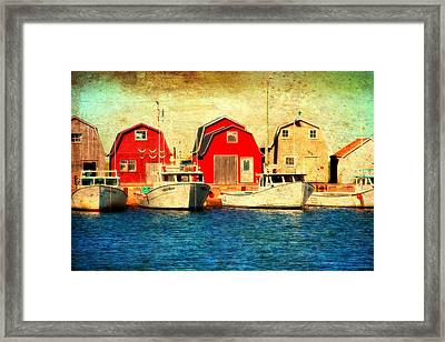 Boats And Boat Houses Pei Photograph  Framed Print by Laura Carter