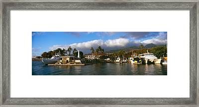 Boats At A Harbor, Lahaina Harbor Framed Print by Panoramic Images