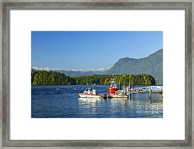 Boats At Dock In Tofino Framed Print by Elena Elisseeva