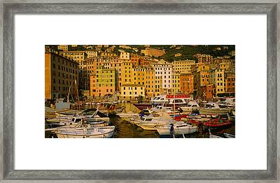 Boats At The Harbor, Camogli, Liguria Framed Print by Panoramic Images