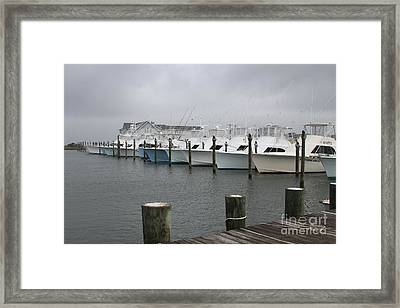 Boats In A Row 2 Framed Print by Cathy Lindsey