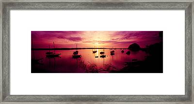 Boats In The Sea, Morro Bay, San Luis Framed Print