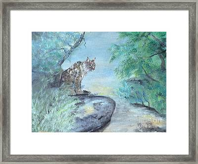 Bob  Framed Print by Laurianna Taylor