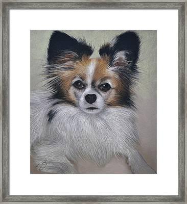 Bobbie - Pastel Framed Print