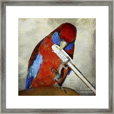 Bobby Parrot Signing Autographs Framed Print by Terri Waters