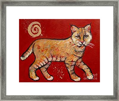Bobcat Framed Print by Carol Suzanne Niebuhr