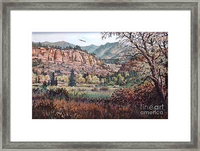 Bobcat Ridge Framed Print by W  Scott Fenton