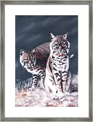 Bobcats In The Hood Framed Print
