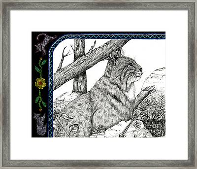Bobcats Lost Tail Framed Print
