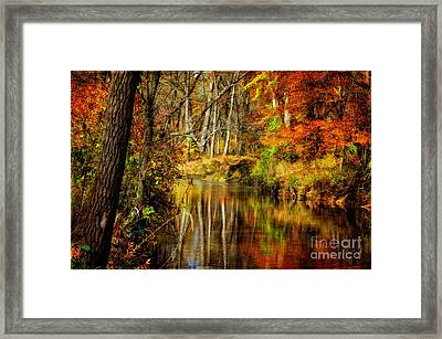 Bob's Creek Framed Print by Lois Bryan