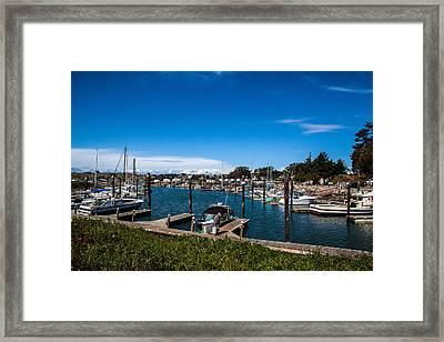 Bodega Bay Harbor Fisherman Framed Print by John Crowe
